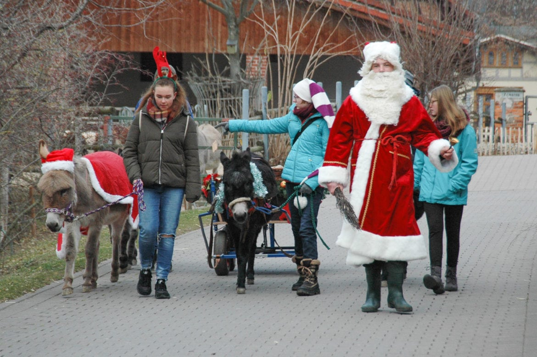 Tierische Weihnachten – t.akt präsentiert Geschichten aus dem Zoopark Erfurt